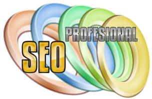 SEO PROFESIONAL,Proyecto Web